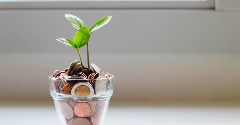 Comment alléger votre facture énergie avec 5 éco-gestes ?